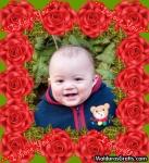 Moldura de rosas
