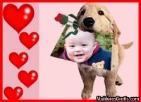 Bilhete de cão apaixonado