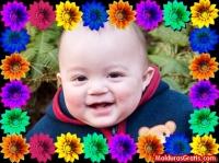 Borda de flores coloridas