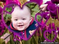 Corações flechados em um campo florido