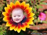 Flores com degradê vermelho e amarelo
