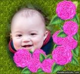 Borda de flores cor-de-rosa