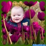 Campo de tulipas cor-de-rosa