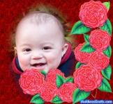 Borde com flores vermelhas