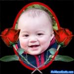 Rosas vermelhas em um fundo preto