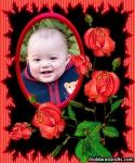 Ramo de Rosas vermelhas