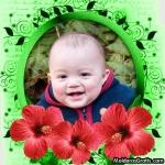 Borda verde e flores vermelhas