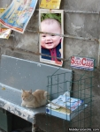 Jornal na rua