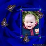 Borboletas e estrelas sobre a Rosa azul