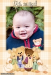 Ursinhos felizes