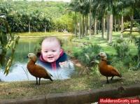 Parque com lago