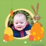 Coelho, ovos e cenoura