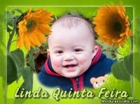 Linda quinta