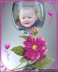 Dentro da taça com corações e rosa